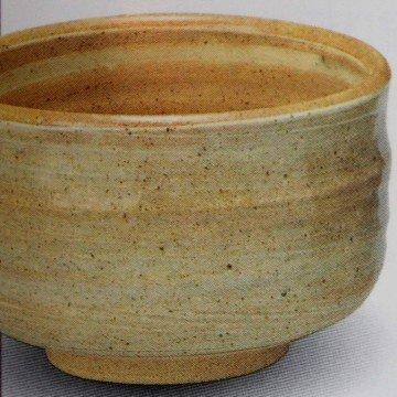 Чаван Токонамэ-яки 166